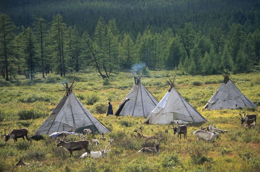 TSAATAN CAMP, RED TAIGA, TSAGANNUR REGION KHOVSGOL PROVINCE, MONGOLIA